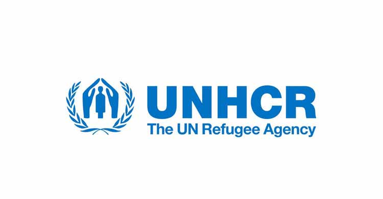 UNHCR seeks cooperation with China within Belt and Road framework: UN official